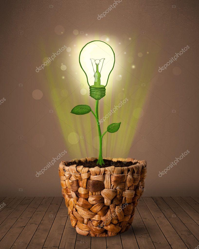 gl hbirne pflanze aus blumentopf stockfoto ra2studio 40200377. Black Bedroom Furniture Sets. Home Design Ideas