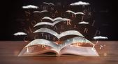 Seiten und glühende Buchstaben fliegen aus einem Buch