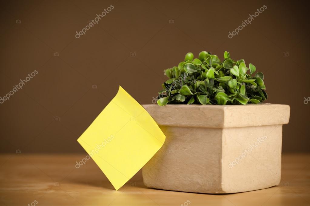 Empty post-it note sticked on flowerpot