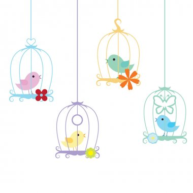 Birds and cage background
