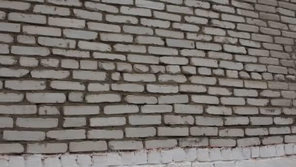 bílé zdi. Steadicam, hd