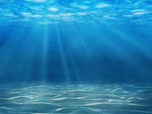 Fotografie Underwater