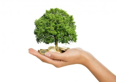 Savings, investment concept