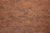 Fotografie grunge cihlová zeď