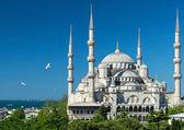 Pohled Modrá mešita v Istanbulu, Turecko