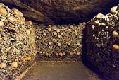 katakomby pařížské