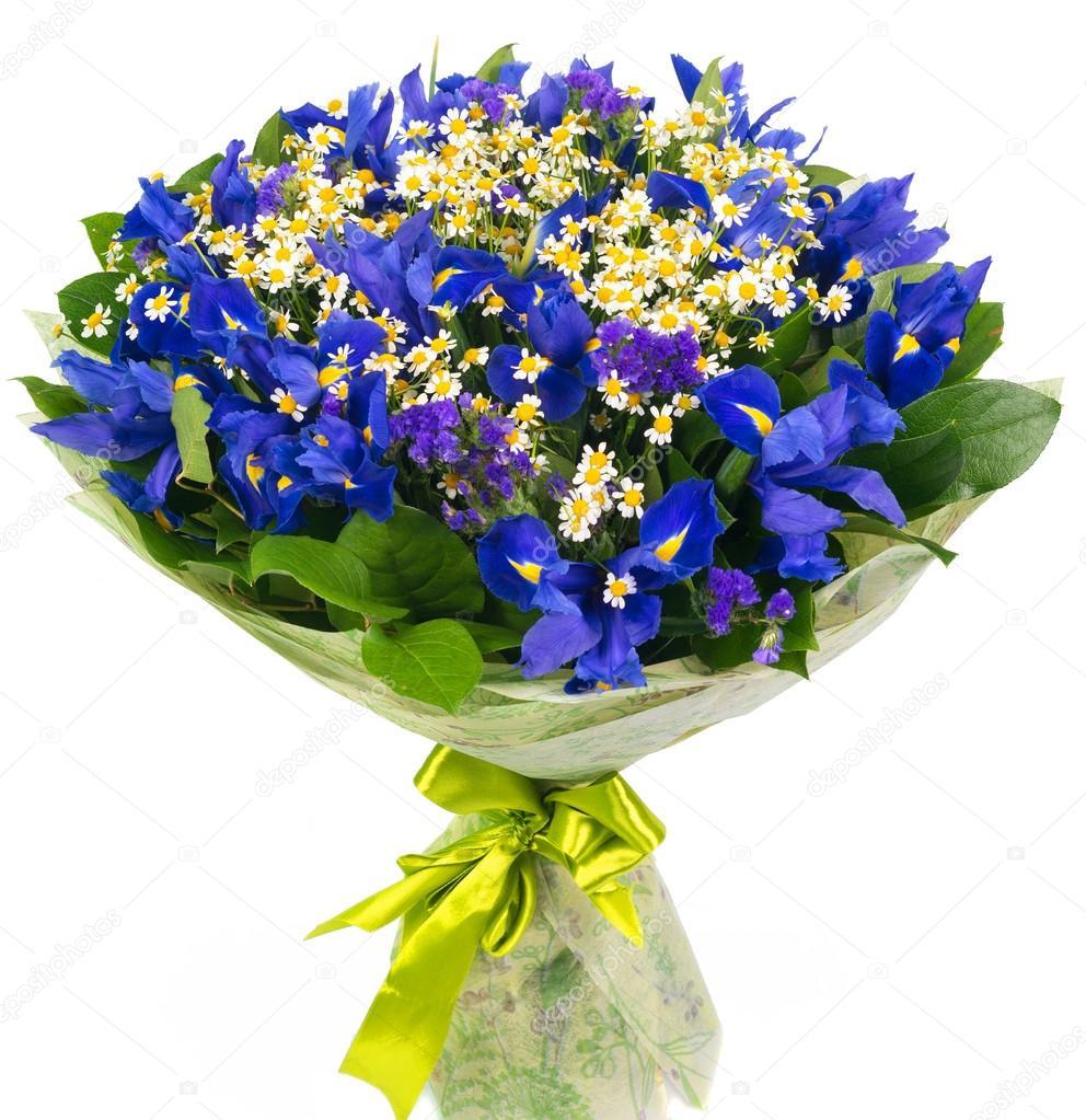 Bevorzugt bouquet d'IRIS bleus et marguerites — Photo #43774691 HP75