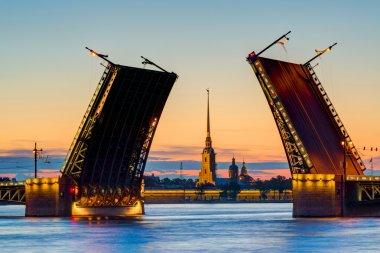 Postcard view of Palace Bridge in St. Petersburg, Russia