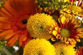 a bouquet of summer flowers, close-up