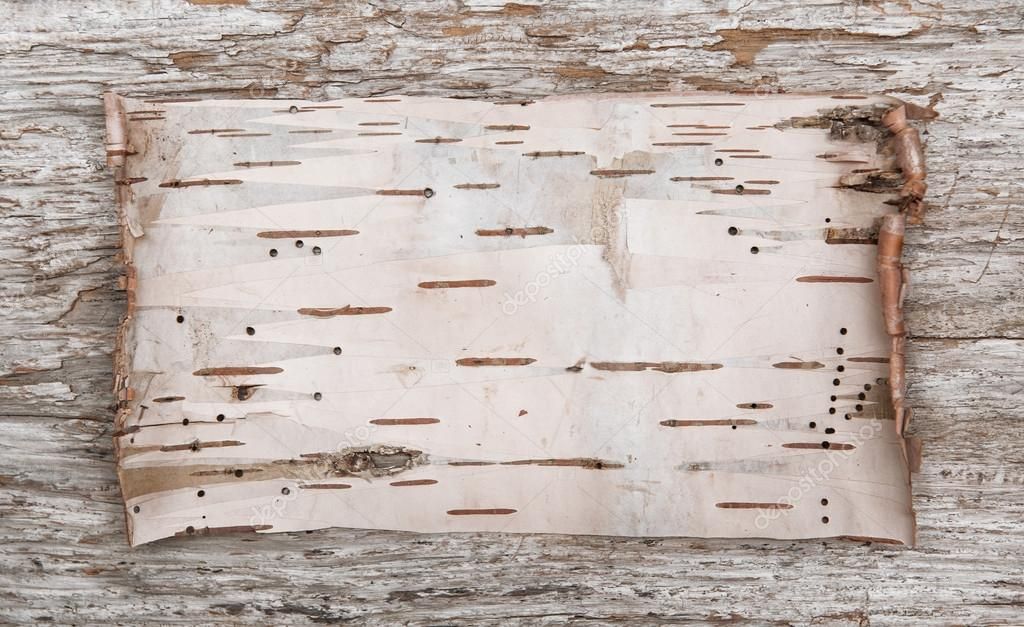 Birch bark on the old wood