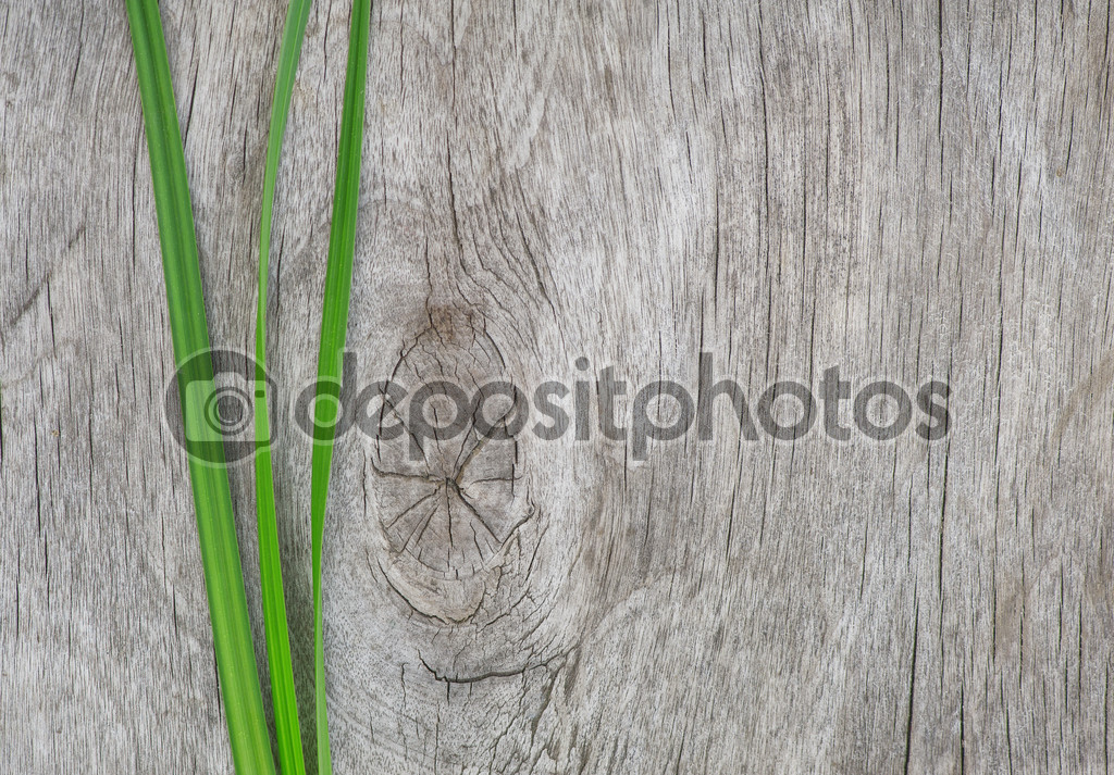 Green grass on the old wood