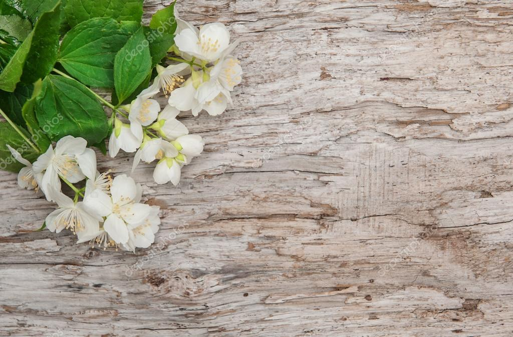 White flowers on the old wood
