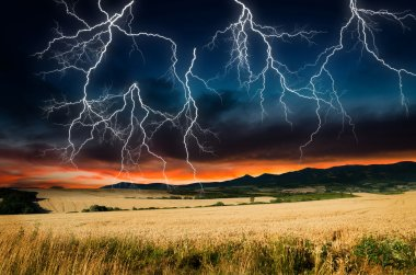 Storm in wheat land