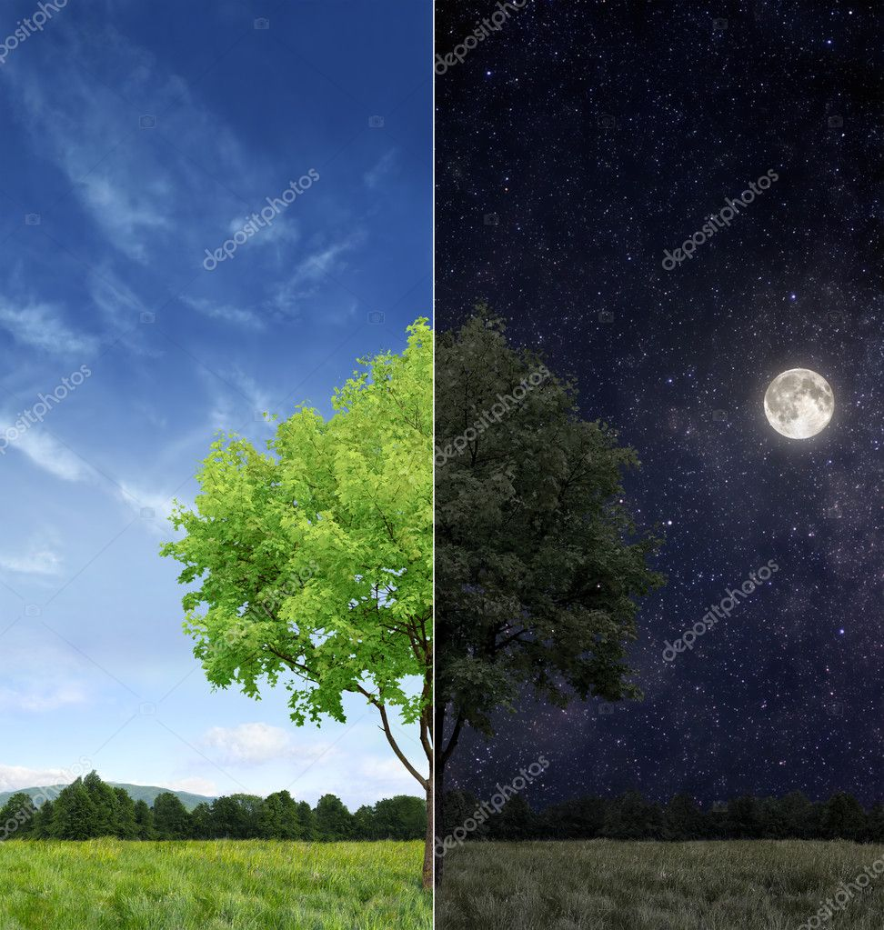 Day and night concept