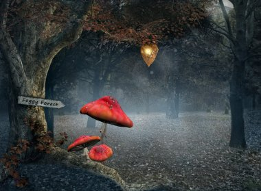 Autumnal forest with fog and red mushrooms
