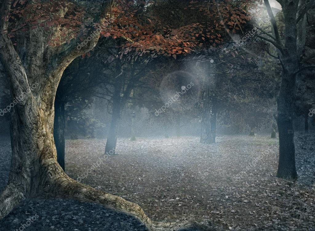 Фотообои Autumnal forest with fog