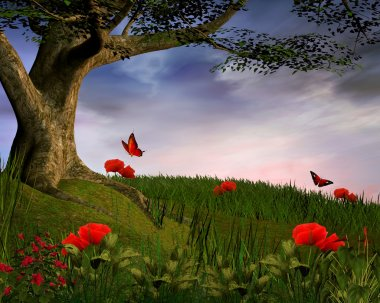 Enchanted nature series - Poppies hill