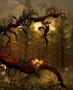 Enchanted nature series