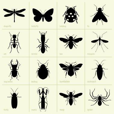 Set of insects stock vector