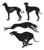 kutyákat