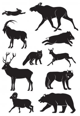 The figure shows the wild animals