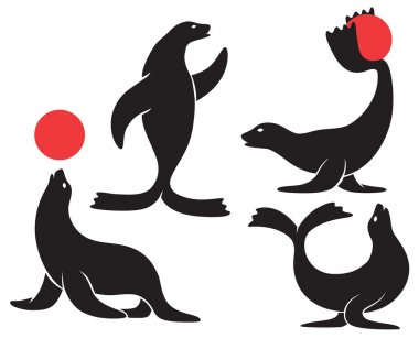 The figure shows a circus seal