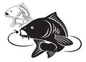 Fotografie ilustrace ryb kapra