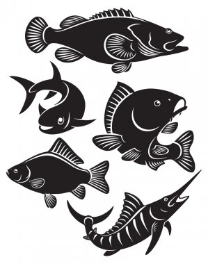 Different fishes