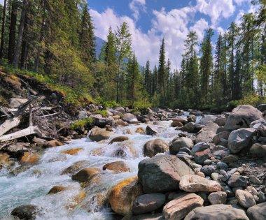 A small mountain river