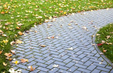 Pavement in autumn