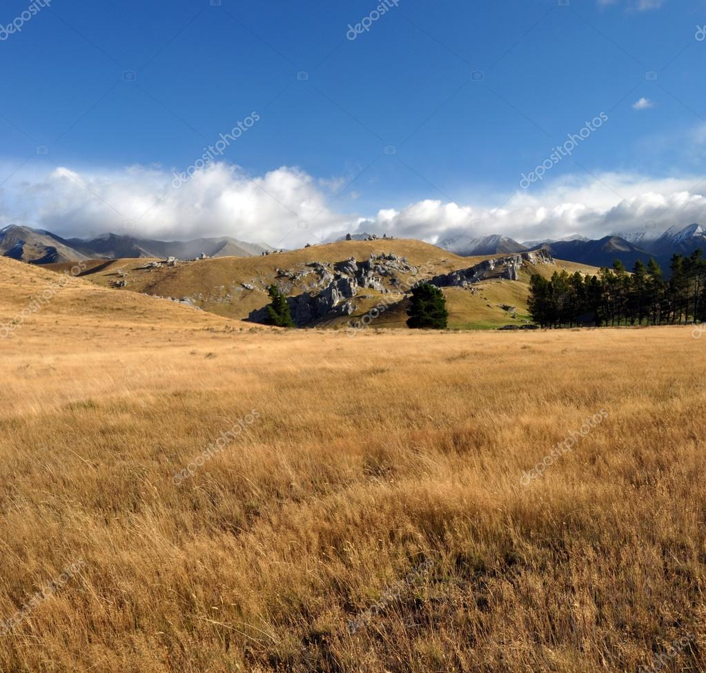 Castle Hill Vertical Panorama, New Zealand