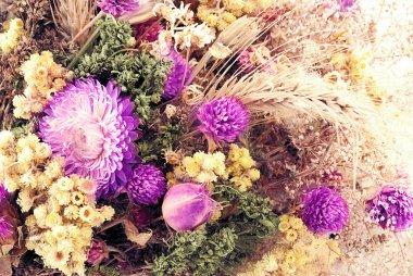 Autumn flowers.