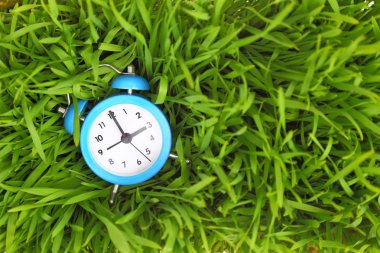 Blue alarm clock on green grass, conceptual.