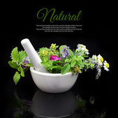 Fotografie White porcelain mortar and pestle with fresh herbs on black background