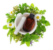 Fotografie Mortar and pestle with fresh herbs and essential oil bottle