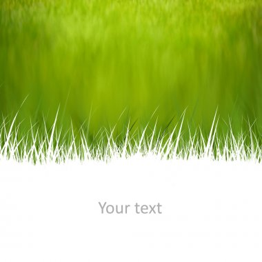 Creative natural background with room for your text