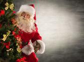 Mikulás áll közel karácsonyfa