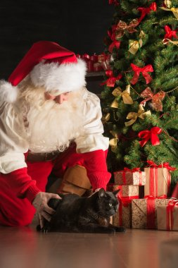 Santa meeting big black cat at home where he bring gifts to