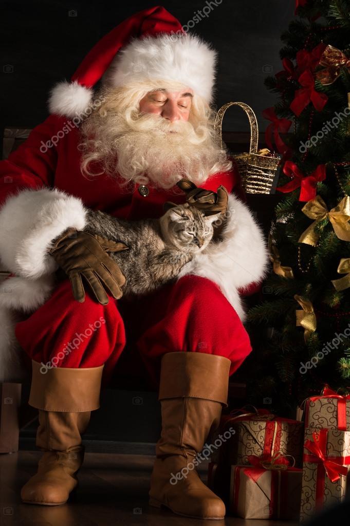 weihnachtsmann sitzend in der n he von weihnachtsbaum und. Black Bedroom Furniture Sets. Home Design Ideas