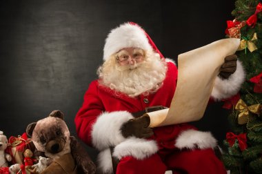 Portrait of happy Santa Claus