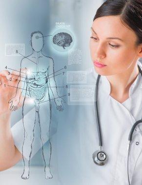 Medical doctor working virtual interface examining human body