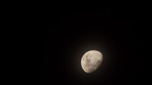 Half moon časová prodleva