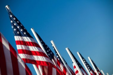 USA American flags in a row