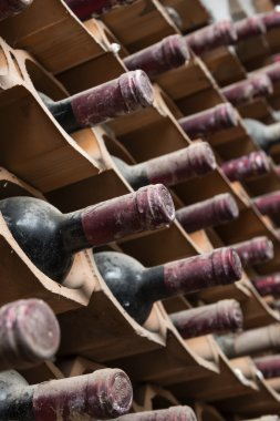 old red wine bottles aging in a wine cellar