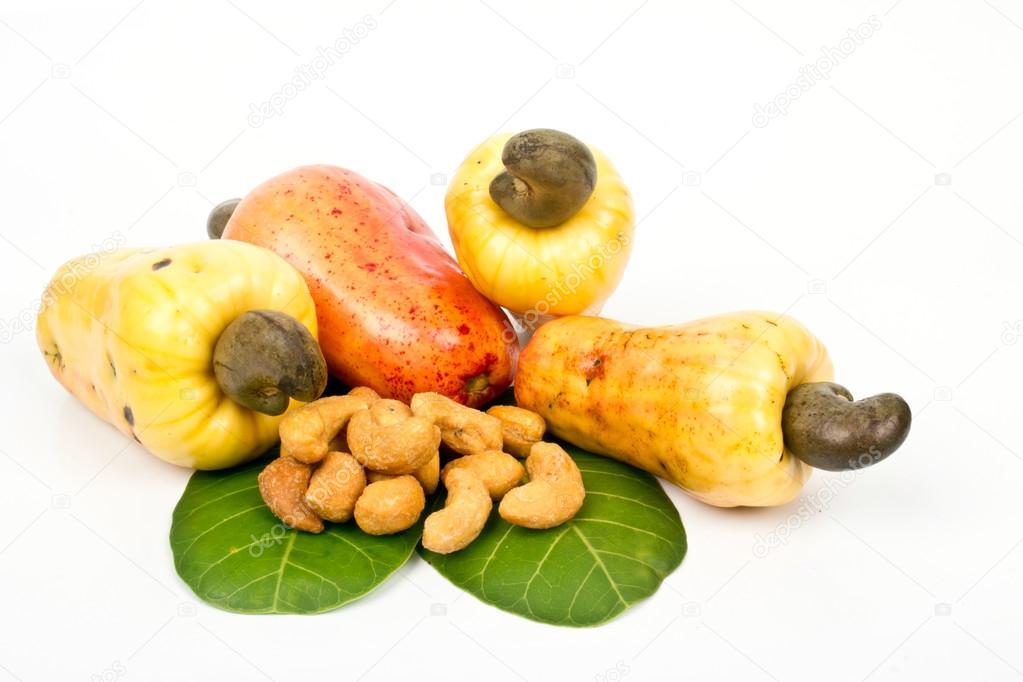 Cashew Nut Apple