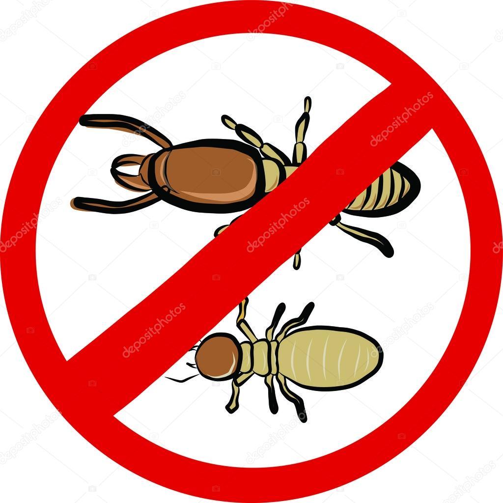 Plan de protección del hogar contra termitas de Eco Plagas