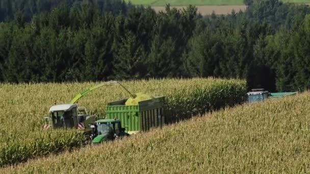 sklizeň obilí v týmové práci