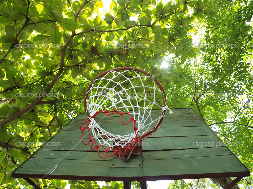 Basketball hoop with fresh green leaves