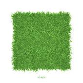 vektor - zelené trávy pozadí obrázku