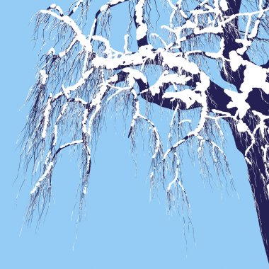 Vector drawing of the tree in winter - detailed vector